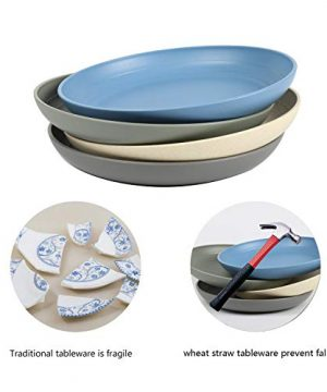 Shopwithgreen Lightweight Wheat Straw Plates 4 Pack 78 Unbreakable Dinner Plates Dishwasher Microwave Safe BPA Free For KidsChildrenToddler Adult 0 3 300x360