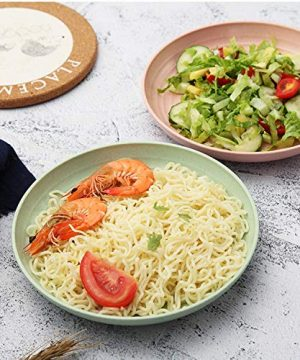 Shopwithgreen Lightweight Wheat Straw Plates 4 Pack 78 Unbreakable Dinner Plates Dishwasher Microwave Safe BPA Free For KidsChildrenToddler Adult 0 9 300x360