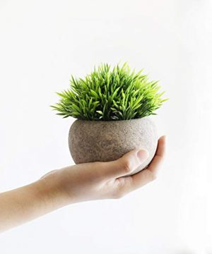 THE BLOOM TIMES 2 Pcs Fake Plants For BathroomHome Office Decor Small Artificial Faux Greenery For House Decorations Potted Plants 0 1 300x360