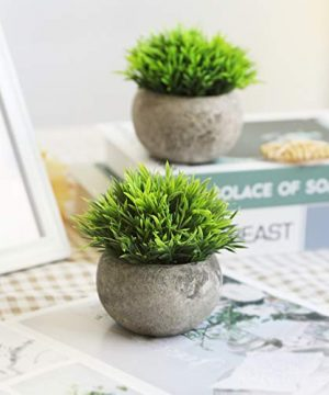 THE BLOOM TIMES 2 Pcs Fake Plants For BathroomHome Office Decor Small Artificial Faux Greenery For House Decorations Potted Plants 0 2 300x360
