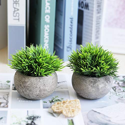 THE BLOOM TIMES 2 Pcs Fake Plants For BathroomHome Office Decor Small Artificial Faux Greenery For House Decorations Potted Plants 0 3