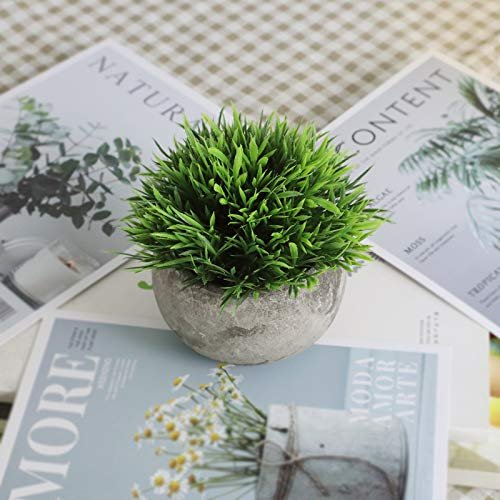 THE BLOOM TIMES 2 Pcs Fake Plants For BathroomHome Office Decor Small Artificial Faux Greenery For House Decorations Potted Plants 0 4