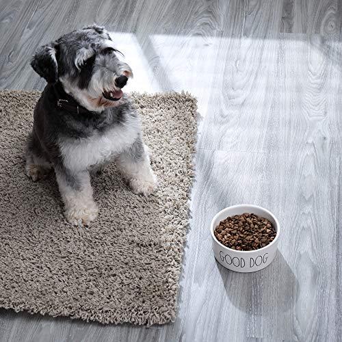 RAE DUNN BY MAGENTA Stoneware Medium Dog Bowl 6 Diameter Cute Saying Good Dog 0 2