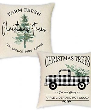 HEOFEAN Set Of 2 Christmas Pillow Covers 18x18 Inches Farmhouse Buffalo Check Truck Pillow Covers For Christmas Home Decor Christmas Trees Decorative Pillow Covers For Couch 0 300x360