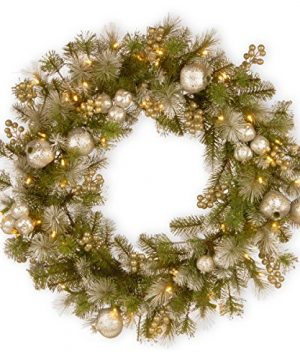 National Tree 24 Inch Glittery Pomegranate Pine Wreath With Sliver Pomegranate Champagne Berries White Frosted Tips And 50 Battery Operated Warm White LED Lights With Timer GTP1 300 24W B1 0 300x360