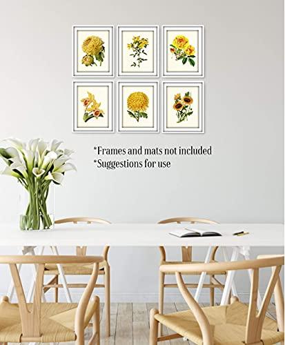 Vintage Yellow Flower Art Prints Botanical Wall Decor Set Of 6 8 X 10 Unframed 0 4