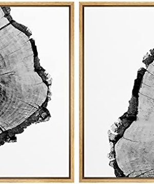 SIGNWIN Framed Canvas Print Wall Art Detail Of Tree Rings Nature Plants Photography Minimalism Modern Closeup Expressive Black And White For Living Room Bedroom Office 24x36x2 Panels 0 300x360