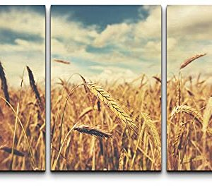 Wall26 Canvas Print Wall Art Set Vintage Retro Golden Wheat Field Nature Wilderness Photography Realism Rustic Scenic Colorful Multicolor For Living Room Bedroom Office 16x24x3 Panels 0 300x265