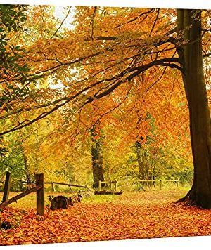 Wall26 Canvas Print Wall Art Yellow Orange Autumn And Fall Forest Floral Nature Photography Realism Rustic Scenic RelaxCalm Multicolor For Living Room Bedroom Office 32x48 0 300x356